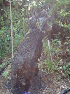 the history of the shaping of the maori culture in new zealand Information about the maori culture, traditions, history and language.
