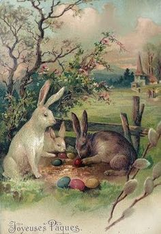 Busy bunnies. I love Easter, can't wait till next weekend. Easter egg hunts...special times with family and friends.