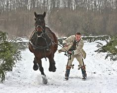 Skijoring.  It didn't snow enough where I live for me to try this, bet my family was relieved.
