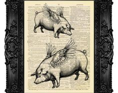 mix media flying pig - Google Search