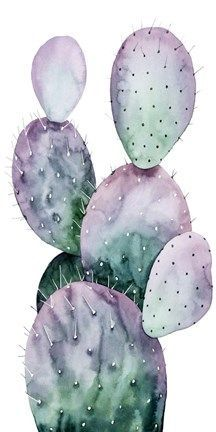 Purple Cactus II by Grace Popp - Purple Cactus II by Grace Popp, Informations About Lila Kaktus II von Grace Popp Pin - Cactus Drawing, Cactus Painting, Watercolor Cactus, Cactus Art, Cactus Flower, Cactus Plants, Watercolor Paintings, Indoor Cactus, Simple Watercolor