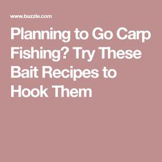 Planning to Go Carp Fishing? Try These Bait Recipes to Hook Them