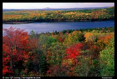 Autumn in Maine - it's no wonder Laurent and Bronwyn called out a zillion different colors from the air