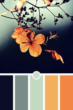 blues palette shades of ~ blues palette _ blues palette shades of _ blues palette color _ blue color palette _ blues and greens palette _ blues and pinks color palettes _ pastel blues palette _ ocean blues palette Color Schemes Colour Palettes, Colour Pallette, Bedroom Color Schemes, Decorating Color Schemes, Home Color Schemes, Color Palette Green, Vintage Color Schemes, Orange Color Schemes, Orange Palette