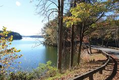 Whether hiking or driving you're sure to see awesome views at Smith Mountain Lake State Park, Virginia