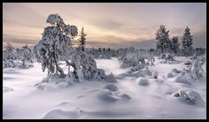 Lappland - Kiilopää II Photo & image by Christian Schweiger ᐅ View and rate this photo free at fotocommunity. Lappland, Beautiful Landscapes, Geography, Finland, Sweden, To Go, Display, Pure Products, Mountains