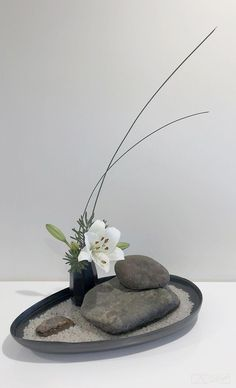 Best 12 Ikebana Japanese Flower Arrangement – Page 532409987197753830 – SkillOfKing. Creative Flower Arrangements, Flower Arrangement Designs, Ikebana Flower Arrangement, Ikebana Arrangements, Flower Vases, Floral Arrangements, Cactus Flower, Deco Floral, Arte Floral