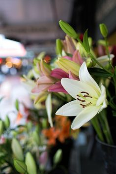 While in Seattle you must visit the Pike Place Market - the flowers are gorgeous!