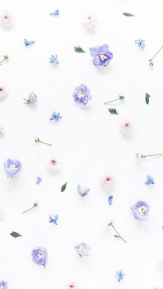 Floral Pattern iPhone Wallpaper is part of Iphone wallpaper vintage - Frühling Wallpaper, Floral Wallpaper Iphone, Flowery Wallpaper, Flower Background Wallpaper, Pastel Background, Trendy Wallpaper, Pastel Wallpaper, Pretty Wallpapers, Flower Backgrounds