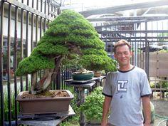 """The With Dragon"" Itoigawa juniper at Fujikawa kouka-en bonsai nursery in Japan."