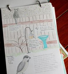 Wonderful entry with lots of examples of nature journal entries.