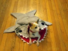 Hey, I found this really awesome Etsy listing at https://www.etsy.com/listing/214211659/shark-burrowing-bed-for-dogs-or-cats-pet