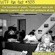 Human Computer -  WTF fun facts