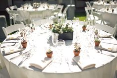 Terra ashworth wedding