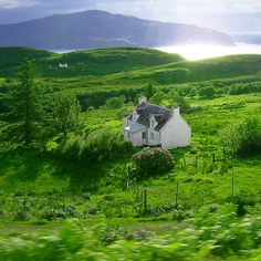 Green land and white cottage in Scotland by Rankeelaw. Gaia, Cottages Scotland, Scottish Cottages, Country Cottages, Beautiful World, Beautiful Places, Alaska, Greenland Travel, Scotland Landscape