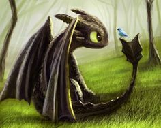 This just go to show that Toothless does have a soft side.
