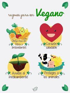Razones para ser vegano