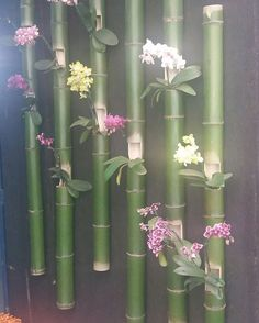 Best 11 The Orchid Fever. Create a very unique wall garden with different kinds of orchi… – – SkillOfKing.