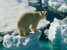 지구 : 온난화 전쟁(Earth : The Climate Wars) – 아~ 무섭구나