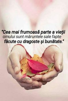 ...O seară frumoasă dragi prieteni... - Ica Neagoe - Google+ My Notebook, God Is Good, True Words, Bible Verses, Inspirational Quotes, Romantic, Sayings, Sign, Facebook