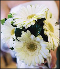 white gerbera daisy bridal bouquet - Google Search