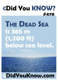 The Dead Sea is 365 m ft) below sea level. You Dont Say, Did You Know, Random Facts, Weird Facts, Interesting Information, Interesting Facts, Medical Mnemonics, Under The Ocean, Jewish History