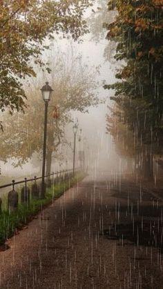 I love rain~ Walking In The Rain, Singing In The Rain, Rain Gif, I Love Rain, Rain Photography, White Photography, Rainy Day Photography, Rain Days, Rainy Night