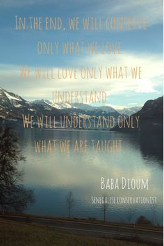 In the end, we will conserve only what we love. We will love only what we understand. We will understand only what we are taught. - Baba Dioum