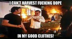 OD Lothbrok Facebook Trailer Park Boys Quotes and Rickyisms 20 mins near Milwaukee, WI  ·   Sunnyvale Trailer Park Bubbles Julian   Poor bubs always getting fucking inconvenienced by the boys schemes 😂