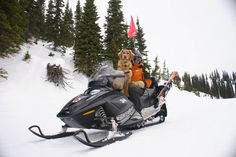 Avalanche Rescue Dogs | The Bark