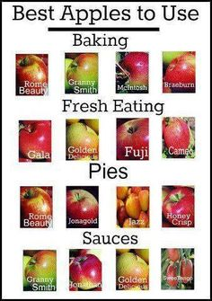 """Another Pinner wrote: """"An easy guide to the best apples to use in cooking & baking. I disagree with the Honeycrisp only under Pies though - it is the BEST one for fresh eating Do It Yourself Food, Think Food, Granny Smith, Food Facts, Fruit Facts, Baking Tips, Baking Hacks, Baking Secrets, Apple Recipes"""
