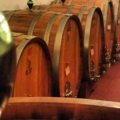 The Rosso di Montalcino stays for 9 months in the barrel and we use barrels of various dimensions for this wine. The Brunello di Montalcino rests for 36-48 months in 25hl Slovanoan Oak Barrels. Next the wine is bottled where it rests in a temperature and humidity controlled environment until it is ready to be put on the market.