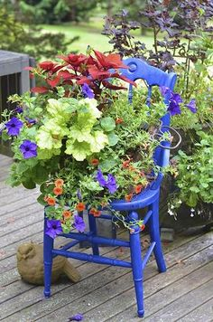 Garden decoration with old chairs and colorful flowers Container Plants, Container Gardening, Colorful Flowers, Beautiful Flowers, Chair Planter, Perfect Plants, Painted Chairs, Diy Chair, Garden Chairs