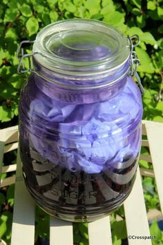 natural dyes; Black beans, so easy, so beautiful, so try it!
