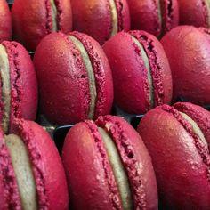 "Carien van Boxtel on Instagram: ""#macarons #nofilter #amsterdam escaping Carnaval!"""