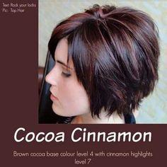 Cocoa cinnamon hair color
