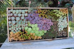 Best Floral Shops In San Francisco Vertical gardens from Flora Grubb. (this is one of my favorites--so colorful & laid out perfectly.)Vertical gardens from Flora Grubb. (this is one of my favorites--so colorful & laid out perfectly. Vertical Succulent Gardens, Succulents Garden, Succulent Wall Planter, Vertical Planter, Outdoor Gardens, Indoor Outdoor, Hanging Gardens, Indoor Gardening, Hanging Planters