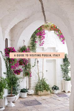 Everything you need to know about visiting Puglia, Italy including where to go, what to do, and how to do it.  Polignano a Mare, Alberobello, Gallipoli, Ostuni, Locorotondo and more!