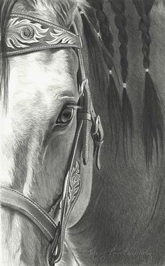 Flame Leaf by Mary Ross Buchholz, Graphite & Charcoal, 12 x 7 Horse Pencil Drawing, Horse Drawings, Animal Drawings, Pencil Drawings, Horse Artwork, Horse Paintings, Pastel Paintings, Arte Equina, Graphite Art