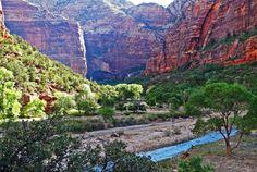 Naturparadies im #Zion #Nationalpark / Natural paradise - Zion Nationalpark #USA