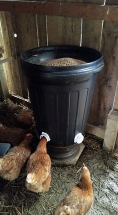 Chicken Coop - Chicken feeder #purelypoultry - by placing a cone inside the can it pushes the food to the sides making it easier for the chickens Building a chicken coop does not have to be tricky nor does it have to set you back a ton of scratch.