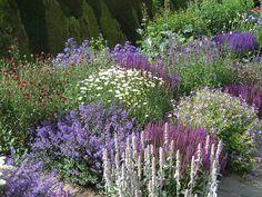 Town Place Garden: This stunning garden is open as part of the National Gardens Scheme