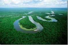 Amazon - Ten Biggest Rainforests in the World