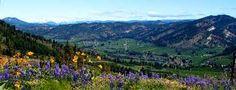 Peshastin in the Wenatchee Valley, WA.