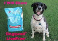 Enter to #win a 25 pound bag of Dogswell LiveFree. Read more about this amazing holistic line of ultra low glycemic, grain  potato free dog food.  http://www.bayliedog.com/2014/06/14/dogswell-live-free-holistic-dog-food-review-giveaway/