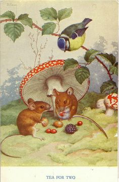 Medici Postcard Pk Mice under Amanita Mushroom- Tea for Two, Noel Hopking Illustration Mignonne, Children's Book Illustration, Book Illustrations, Beatrix Potter, Vintage Cards, Vintage Postcards, Marjolein Bastin, Pet Mice, Mushroom Art
