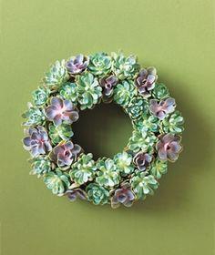 Cute succulent wreath