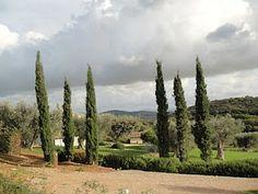 Um lugar magico na Maremma - Valle Buia!