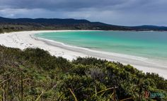 Visit stunning Binnalong Bay, Bay of Fires, Tasmania, Australia Visit Australia, Western Australia, Australia Travel, Queensland Australia, Australian Road Trip, Australian Beach, Best Beaches To Visit, Cool Places To Visit, Great Days Out