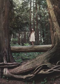 I would love to do this, dress up in a white dress and be in a forest at the same time, how perfect! <3